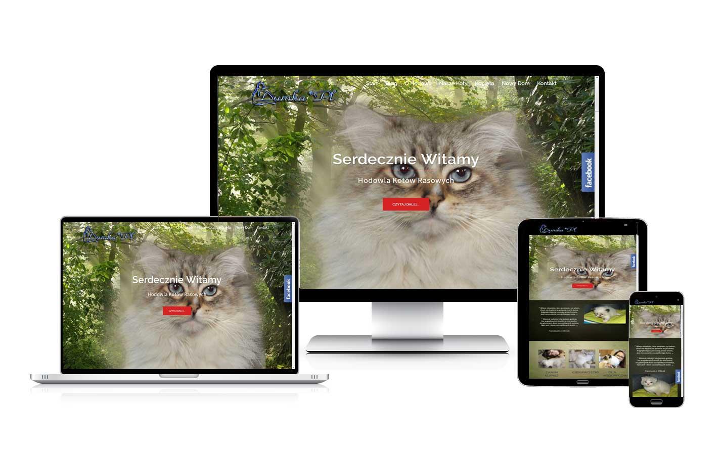 Strona www dla hodowli kotów dumka.eu