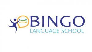 bingo-szkoła, logo, projekty, dla firm, grafika komputerowa, freelancer, identyfikacja wizualna, nowoczesne strony internetowe